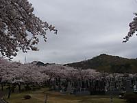 20120505_2