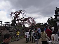 20130428_2