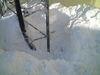 snow0109_1