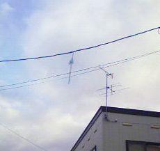 200711290741000