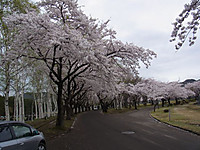 20120505_1